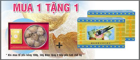 to yen hong