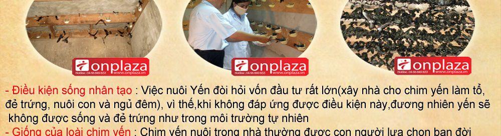 to-yen-sao-khanh-hoa-cao-cap_019