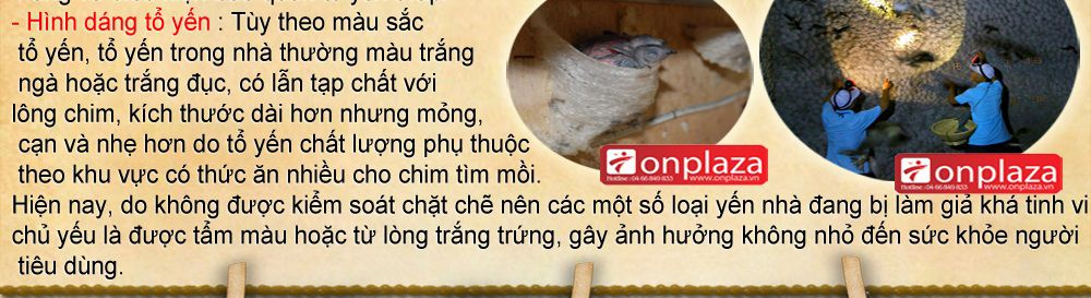 to-yen-sao-khanh-hoa-cao-cap_021