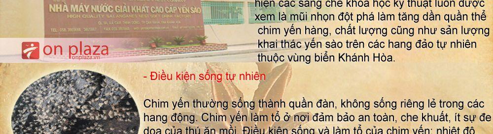 to-yen-sao-khanh-hoa-cao-cap_024