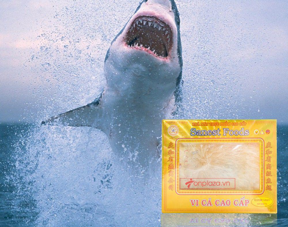 Vi cá cao cấp loại 1 hộp 100g VC009 2