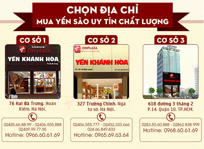 Chọn địa chỉ mua yến sào Khánh Hòa uy tín chất lượng