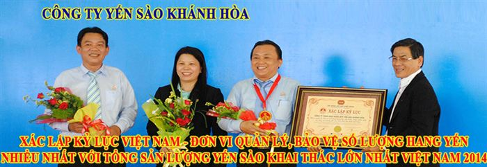 banner cong ty yen sao