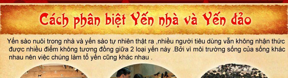 to-yen-sao-khanh-hoa-cao-cap_018