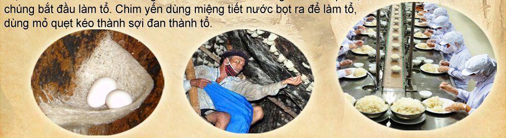 to-yen-sao-khanh-hoa-cao-cap_026