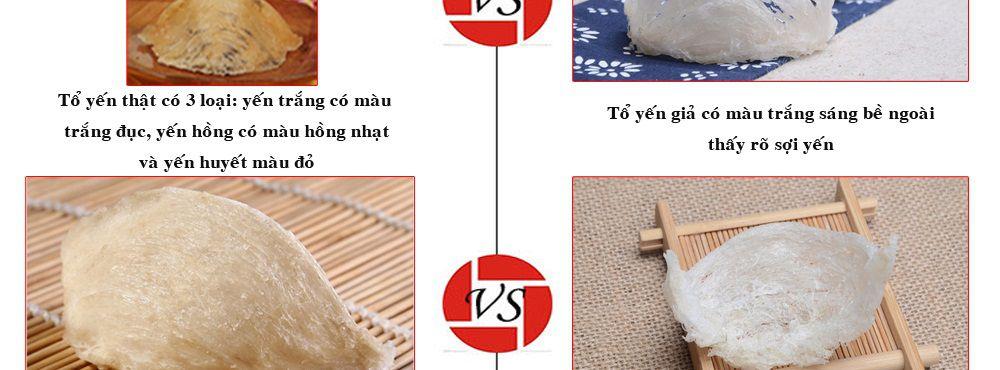 to yen trang copy_024