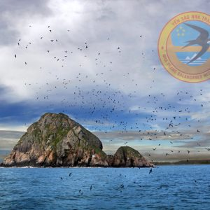 Thương hiệu Yến đảo thiên nhiên Khánh Hòa