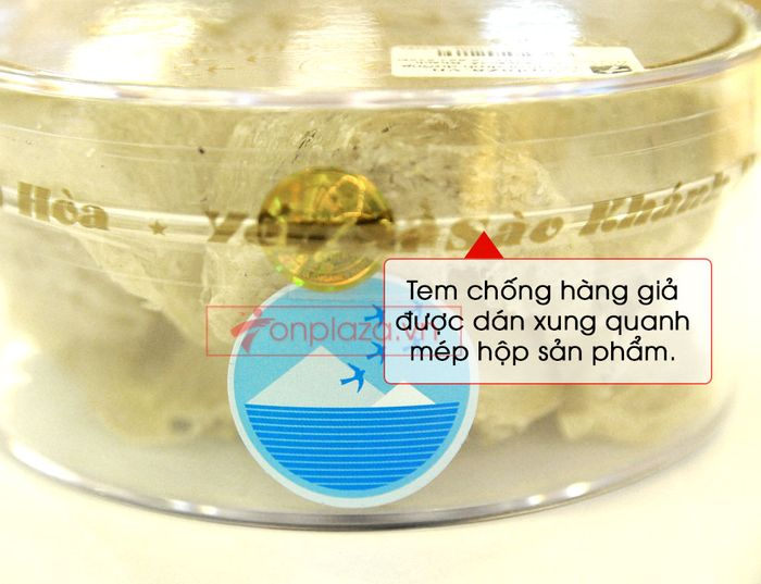 Tổ yến trắng sơ chế Khánh Hòa 100g (TP1) Y001 12
