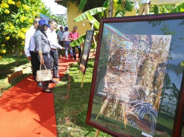 Người dân tham quan triển lãm về yến sào